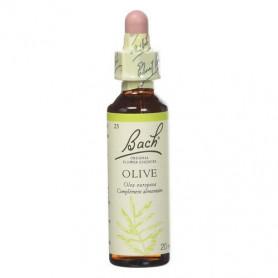 Olive -  Fleurs de Bach n°23