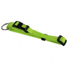 collier vert pour chien solide