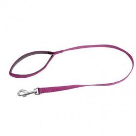 Laisse pour Chien Miami violette - Accessoire pour Chien