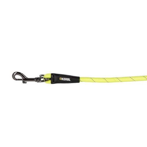 Laisse en corde Chien 200 cm - Laisse fluo chien