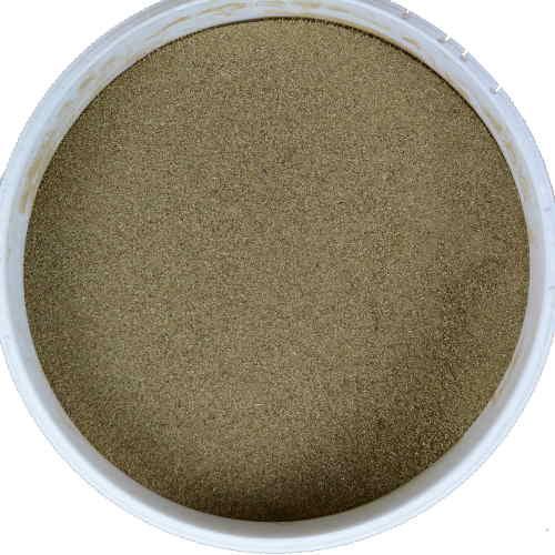 Boldo Cheval - Plante dépurative