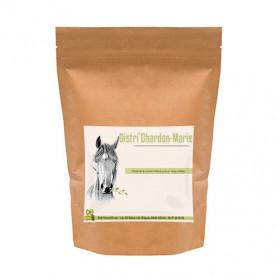 chardon marie cheval