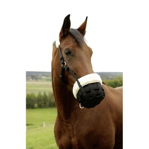 muselière pour cheval