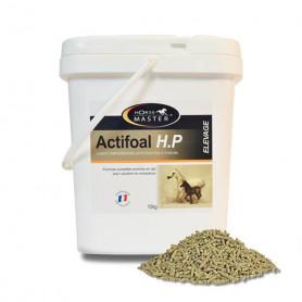 ACTIFOAL H.P - Aliment complémentaire lacté pour poulains
