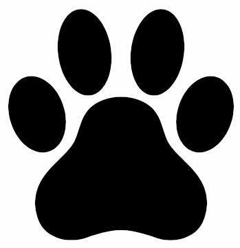 patte de chien